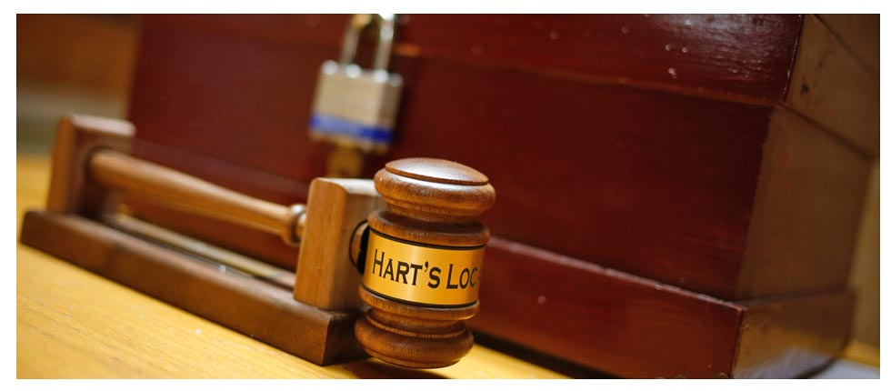 Reuters Photo: Hart's Location gavel and voting box